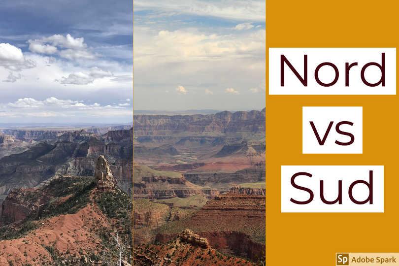 Read more about the article Grand Canyon: è meglio visitare il North Rim o il South Rim?